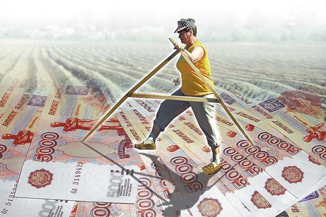 Земельный налог для пенсионеров в 2021 году: какие предусмотрены льготы?