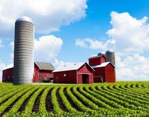 Покупка (продажа) земли сельхозназначения 2021: пошаговая инструкция